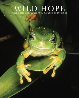Wild Hope Magazine - Volume 3