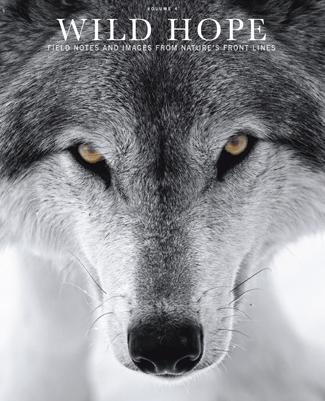 Wild Hope Magazine - Volume 4